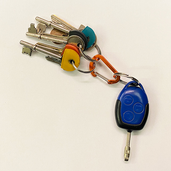 D-ring Carabiner with keys